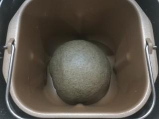 红糖黑芝麻叶子软欧,揉面至完全扩展阶段后,可直接在面包机桶内进行发酵;