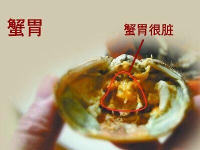 清蒸大闸蟹,河蟹不能吃的四个部位:蟹胃 想吃盘锦正宗稻田蟹   加VX:liye19811202  暗号:吃货 😁😁😁