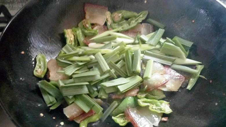 尖椒炒腊肉,放蒜苗炒均。