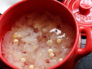 砂锅银耳莲子汤,加水没过食材。