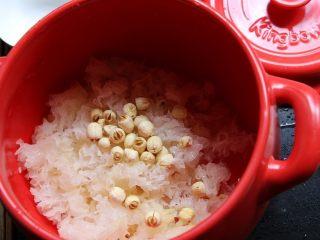 砂锅银耳莲子汤,加入泡好的莲子