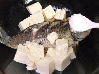 浓汤鲫鱼炖豆腐,倒进豆腐,撒适量盐