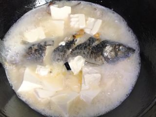 浓汤鲫鱼炖豆腐,打开盖子,汤已经成乳白色了