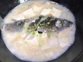 浓汤鲫鱼炖豆腐,撒一点点葱花,关火,浓汤鲫鱼炖豆腐就完成了