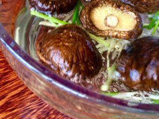 爆炒素鳝丝,怱断+一小半姜丝+料酒(12g)+洗净的干香菇加温水泡发
