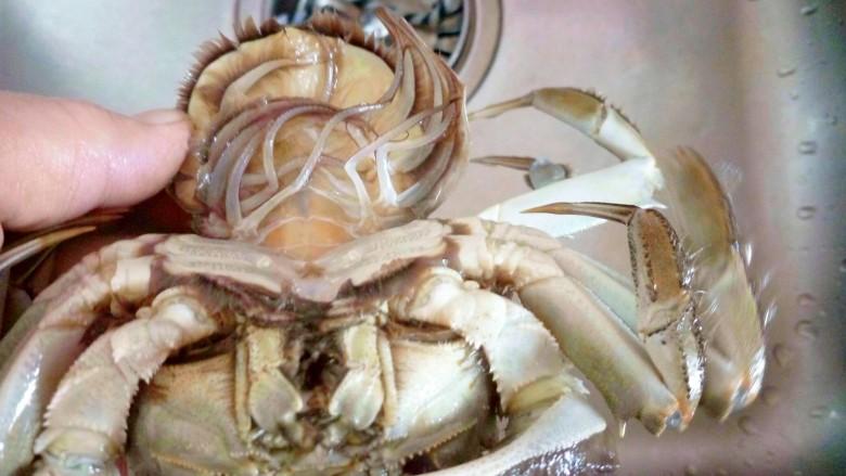 清蒸大闸蟹,用刷子慢慢清洗,要把屁股的大便挤出来。