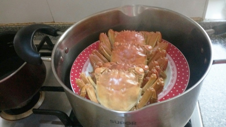 清蒸大闸蟹,打开盖子端出来直接吃了,