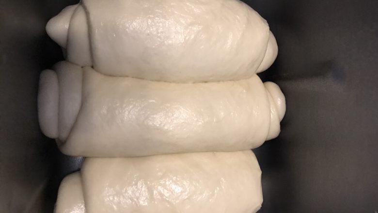 北海道中种吐司,卷起的面团全部放入吐司盒。
