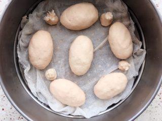 土豆水晶包子,均匀摆放蒸锅上;