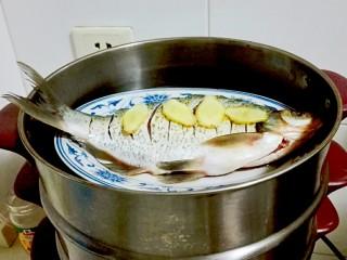红红火火~清蒸鳊鱼,蒸锅水开放鱼蒸十分钟,焖三分钟