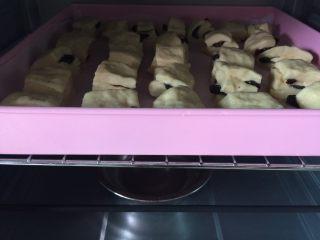 口袋面包仔,烤箱进行2发,烤箱发酵功能35度,底下放碗开水,发酵45分钟