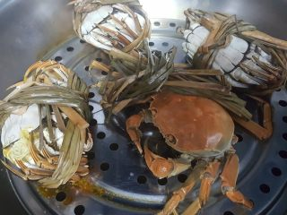 清蒸大闸蟹,10.这时螃蟹也蒸好了,有一只螃蟹挣扎了好久,但是他也没逃脱被蒸熟的厄运。嘎嘎
