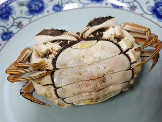 清蒸大闸蟹,14.蒸好的螃蟹胖鼓鼓的好肥哟。螃蟹下身是半圆的为母如是尖的则是公.