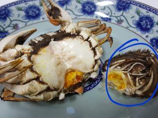 清蒸大闸蟹,15.首先将母蟹的下半身把它去除,这个是不能吃的。 要把它除去。