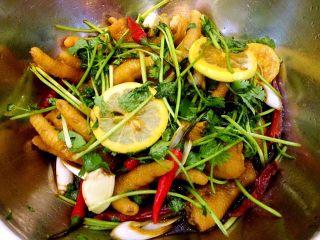 秘制拌凤爪,秘制来了,放干辣椒。锅烧热,放植物油。烧热后趁热浇在鸡爪上,这步又忘记拍照了。