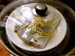 超级鲜美清蒸带鱼(0厨艺),锅内放水烧开,放入腌好的带鱼大火蒸十分钟,关过焖五分钟。