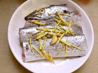 超级鲜美清蒸带鱼(0厨艺),鱼身下铺上大蒜和生姜丝,再放上鱼段,再撒上姜丝,大蒜,辣椒丝,淋料酒。
