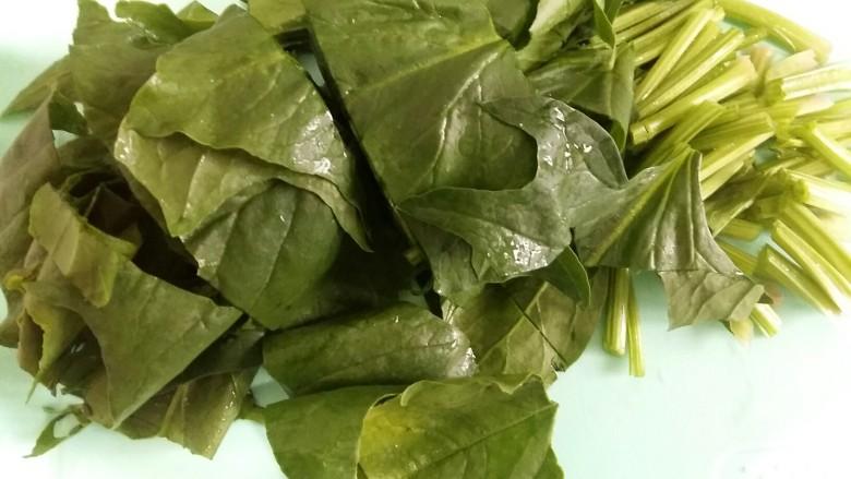 虾丸菠菜汤,菠菜切5厘米左右的段。