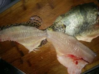 鸿运松鼠桂鱼,2.反面一样