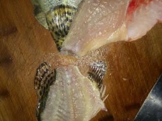 鸿运松鼠桂鱼,3.斩去龙骨,将胸部大刺片去,鱼肉打人字花刀,由于鱼肉有点透明,我厨房灯光暗,改刀看不清楚!拍淀粉时候可以看见!