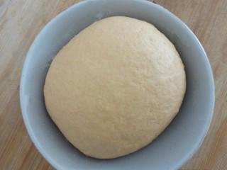 爱心豆沙包,发酵好的面团,拉开呈蜂窝状