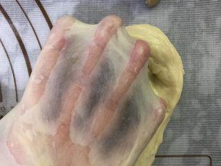 大理石纹吐司,两个揉面程序后达到完全扩展阶段,面团可以撑出手套膜