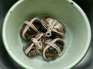 清蒸大闸蟹,螃蟹四只放入一个比较深的盆中,放入清水 清水不淹过螃蟹,拿着盆子摇晃。