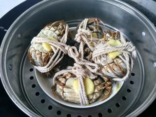 清蒸大闸蟹,锅里的水烧开以后,将螃蟹放入蒸笼,每一个螃蟹肚子朝上。