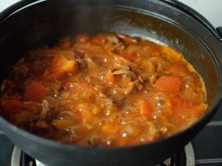 【再添一碗饭】の番茄牛腩锅,如图,番茄块慢慢变软,融入汤汁里去,这时,尝一下味道,撒一些黑胡椒,根据个人喜好加一些鸡精调味