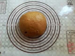 红糖谷物面包,面团揉圆,盖上保鲜膜松弛15分钟