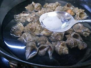 水煮海螺,洗好的海螺放入锅中,加入末过海螺的水,加适量的盐。