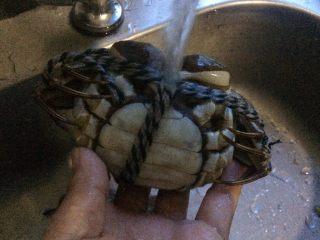 清蒸螃蟹,蟹冲洗一遍