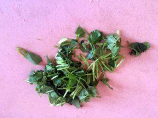 西红柿牛腩汤,香菜洗净切段。