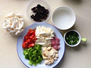 彩椒滑口白玉菇,黑木耳是前一天泡发的,准备好水淀粉,切好葱花备用