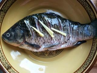 鲫鱼蒸蛋,在鱼的内堂和花刀内都放上姜片,腌制一小时