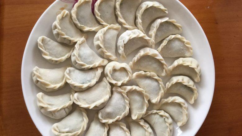 猪肉茴香馅饺子,全都包好摆盘