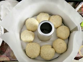 花环汉堡,八寸中空模具用油纸围一圈或者刷黄油防粘,摆入面团