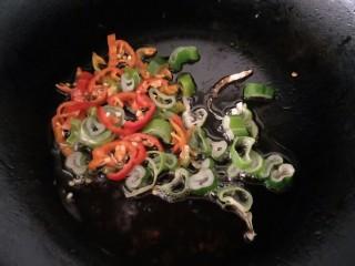 白菜猪肉炖粉条,放入葱花姜片和大料继续炒