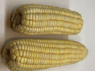 玉米渣渣,取新鲜玉米