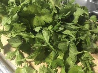 改良版芹菜叶菜圃窝窝头,芹菜叶子略微有点苦味,这就是选择它的原因之一,老一辈人都是挖苦菜加在玉米面里,因为苦菜其顾名思义就是苦,才叫苦菜。所以我选择芹菜叶子。