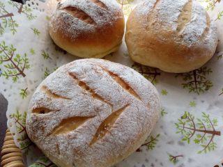 蔓越莓奶酪面包