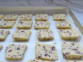蔓越莓饼干,烤盘垫一层油纸,放入饼干胚,每一块之间留适量间距