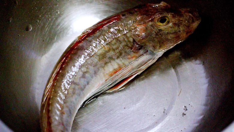吃掉一朵花+萝卜丝柳叶包&清炖红蟹鱼汤,红蟹鱼用清水冲洗干净后