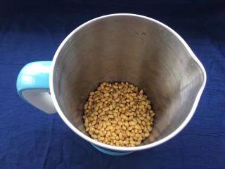 菜豆腐,侵泡好的黄豆发入清水中清洗几次,清洗干净黄豆表面附着的灰尘。准备豆浆机一台,把泡好的黄豆倒入豆浆机中(添加黄豆数量可以根据自己的机器进行调整,一次磨不完可以分多次打磨)。