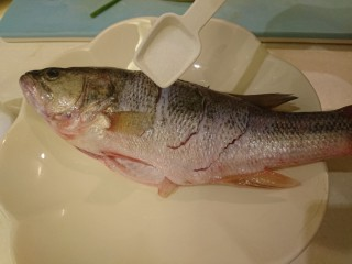 清蒸鱸魚,魚身抹鹽,全身都要!