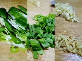 红烧南瓜丸子,备辅料,青菜洗净切合适大小,蒜苗切碎,大蒜生姜切碎。