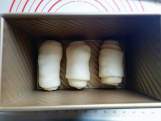 最爱面包+葡萄干小面包,放入模具中,放入烤箱进行二次发酵。