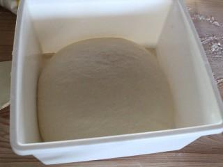 最爱面包+咖哩面包,将面团放置室温发酵,1.5小时后膨胀成2倍大的面团。