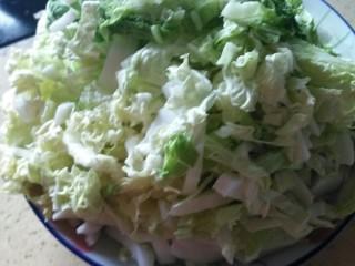 白菜粉条豆泡炖一锅,白菜洗干净,切丝,切段,切片随意,准备出来