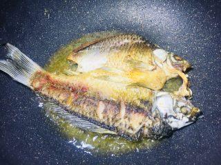 单身必吃独家酱烧鲫鱼,背部煎的金黄了,就把鱼翻面,看,听我的总是没有错的,一点鱼皮也没破